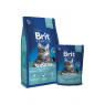 Brit Premium Cat Sensitive