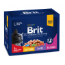 Brit Premium Cat Pouches Family Plate
