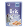 Brit Premium Cat Pouch with Salmon Fillets in Jelly for Adult Cats