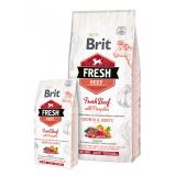 Brit Fresh Beef with Pumpkin Puppy Large